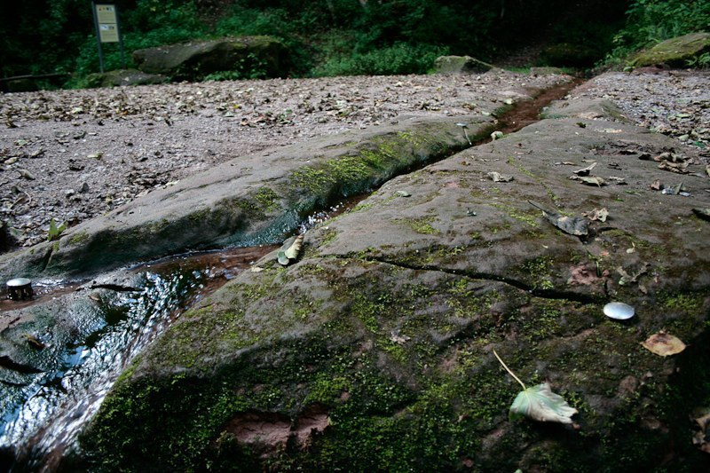 baerenhoehle-rodalben-2006_5
